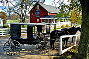 Clydesdale Posters - Amish Country Poster by Robert Harmon