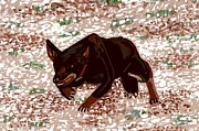 Kelpie Painting Metal Prints - Australian Kelpie Dog Portrait Metal Print by Olde Time  Mercantile