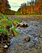 Birch River Prints - Autumn Stream Print by Robert Harmon