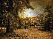 Willow Lake Digital Art Posters - Autumns Canvas Poster by Jessica Jenney