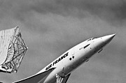 Passenger Plane Framed Prints - Aviation Icons - Air France Concorde In Black and White Framed Print by Colin Utz