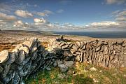 Fanore Framed Prints - Burren Stone Walls Framed Print by John Quinn