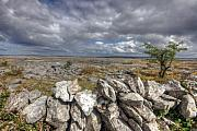 County Clare Framed Prints - Burren Wall Framed Print by John Quinn