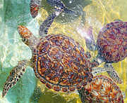 Tropical Fish Paintings - Cayman Turtles by Carey Chen