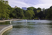 Central Park Photos - Central Park Pond by Madeline Ellis
