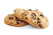 Goodies Posters - Chocolate chip cookies Poster by Elena Elisseeva