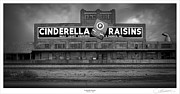 Selma Framed Prints - Cinderella Raisins Framed Print by Lar Matre