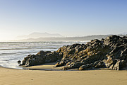 Mist Metal Prints - Coast of Pacific ocean on Vancouver Island Metal Print by Elena Elisseeva