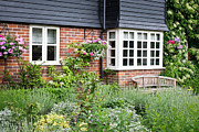 Country Cottage Photos - Cottage garden by Tom Gowanlock