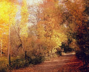 Autumn Landscape Mixed Media - Country road by Irina Hays