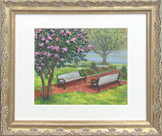 Park Benches Pastels - Crepe Myrtle at Flinn Park by Nancy Heindl