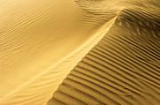 Desert Sand Dune Print by Ezra Zahor
