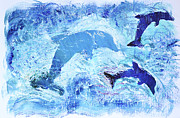 Shelley Myers - 3 Dolphin PLAY