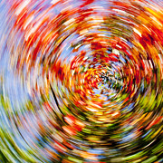 Fall Abstract Print by Steven Ralser