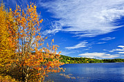 Woods Photos - Fall forest and lake by Elena Elisseeva