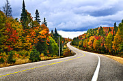 Twisting Framed Prints - Fall highway Framed Print by Elena Elisseeva