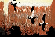 Geese Digital Art Posters - First Snow Poster by Sharon K Shubert