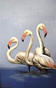Vanessa Lomas - 3 Flamingoes