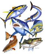 Sportfish Boat Framed Prints - Gamefish collage Framed Print by Carey Chen