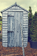 Winter Sky Posters - Garden Shed Poster by Christopher and Amanda Elwell