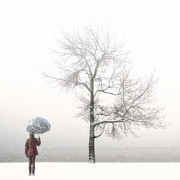 Gloomy Trees Posters - Girl With Umbrella Poster by Joana Kruse