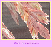 Gone With The Wind Photos - Gone With The Wind by Susanne Van Hulst