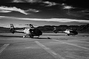 Helicopter Framed Prints - grand canyon sightseeing tours helicopters at boulder city airport terminal Nevada USA Framed Print by Joe Fox