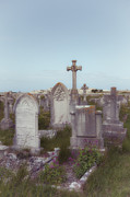 Tomb Photos - Graveyard by Joana Kruse