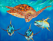 Beach Tapestries - Textiles Posters - Green Sea Turtle Poster by Daniel Jean-Baptiste