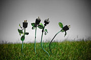 Wire Metal Prints - Growing Green Energy Metal Print by Amy Cicconi