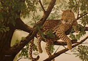 Leopards Paintings - Hanging around by Gilles Delage