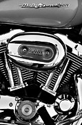 Harley Davidson Photos - Harley Davidson Sportster 1200 by David Patterson