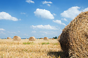 Ground Art - Haystacks in the field by Michal Bednarek