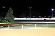 Horses Framed Prints - Hollywood Casino at Charles Town Races - 12122 Framed Print by DC Photographer