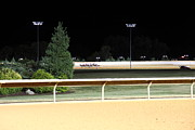 Horse Posters - Hollywood Casino at Charles Town Races - 12123 Poster by DC Photographer