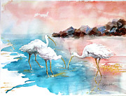The Nature Center Posters - Ibis on the Beach Poster by Joyce Allen