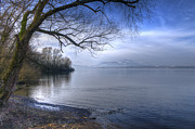 Zug Metal Prints - Lake Zug Metal Print by Caroline Pirskanen