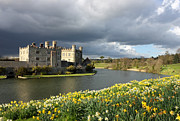 Manor Prints - Leeds Castle in Kent United Kingdom Print by Kiril Stanchev