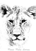 Animal Portrait Prints Prints - Lion Portrait Print by Aidan Moran