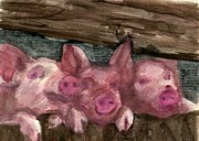 3 Little Pigs Print by Sandra Stone