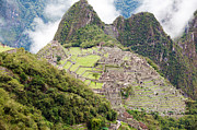 Peruvian Llama Prints - Lost City of Machu Picchu - Peru Print by Yaromir Mlynski