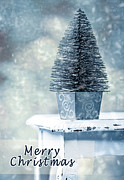 Dappled Light Photo Posters - Miniature Christmas Tree Poster by Christopher and Amanda Elwell