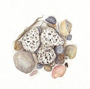 Nest Paintings - Nest of Stone by Amanda Makepeace