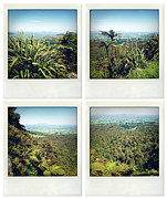 Greenery Prints - New Zealand Print by Les Cunliffe