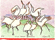 Cranes Drawings Framed Prints - Nine Ladies Dancing Framed Print by Kippax Williams