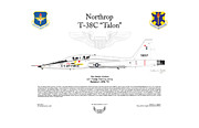 12th Air Force Prints - Northrop T-38C Talon Print by Arthur Eggers