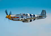 Tags Photos - P-51 Mustang by Puget  Exposure