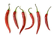 White Background Posters - Red hot chili peppers Poster by Elena Elisseeva