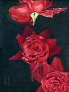 Roses Painting Posters - 3 Roses Red Poster by Katherine Miller