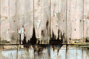 Tiled Prints - Rotting Wooden Panels Crumbling With Decay Print by Fizzy Image